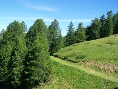 Location au ski Residence Sun Valley - La Plagne - Intérieur