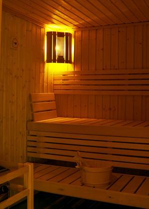 Location au ski Residence Sun Valley - La Plagne - Sauna