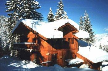 Location au ski Chalet 5 pièces 9 personnes - Les Chalets De La Tania - La Tania - Extérieur hiver