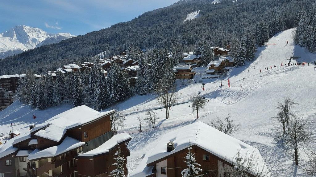 Location au ski Appartement 2 pièces 5 personnes (15) - Residence Saboia - La Tania