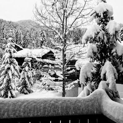 Vacances en montagne Chalet duplex 4 pièces 13 personnes - Chalet Berger - La Tania - Extérieur hiver