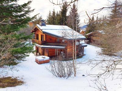 Location La Tania : Chalet Lea hiver