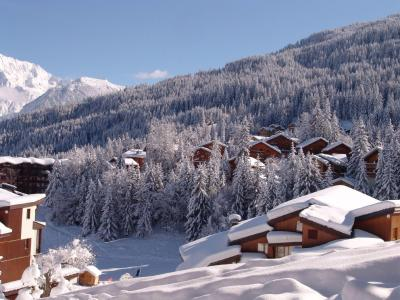 Accommodation Les Chalets de la Tania