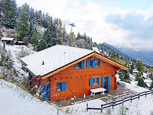 Partir au ski Chalet Alpina P12