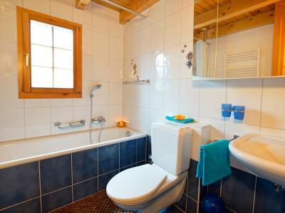 Аренда на лыжном курорте Chalet Alpina P12 - La Tzoumaz - Туалет