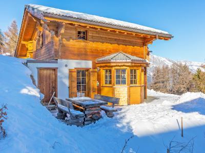 Vacances en montagne Chalet Bellevue - La Tzoumaz - Extérieur hiver