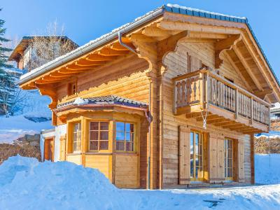 Affordable ski Chalet Bellevue
