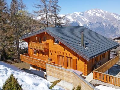 Vacances en montagne Chalet Harmonie - La Tzoumaz - Extérieur hiver