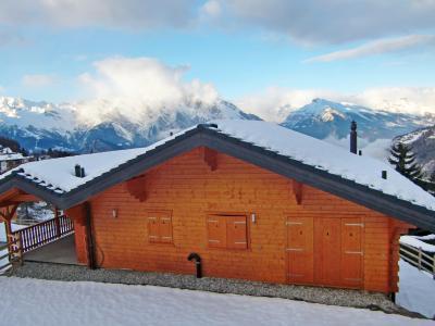 Location au ski Chalet 7 pièces 12 personnes - Chalet Maria - La Tzoumaz - Extérieur hiver