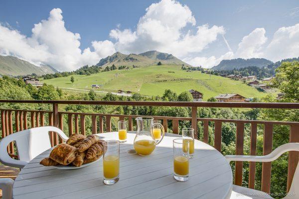 Location au ski Appartement 2 pièces 5 personnes (303) - Residence L'androsace - Le Grand Bornand - Balcon