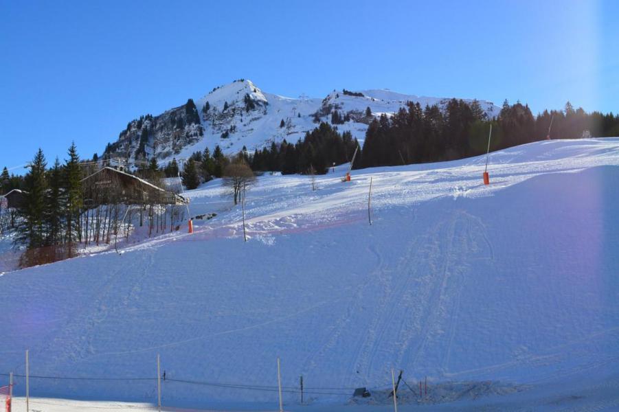 Location au ski Studio coin montagne 6 personnes (56) - La Résidence le Castel des Neiges - Le Grand Bornand