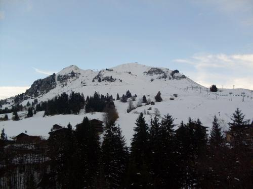 Holiday in mountain resort 2 room apartment 4 people - Résidence Blanche Neige - Le Grand Bornand - Winter outside