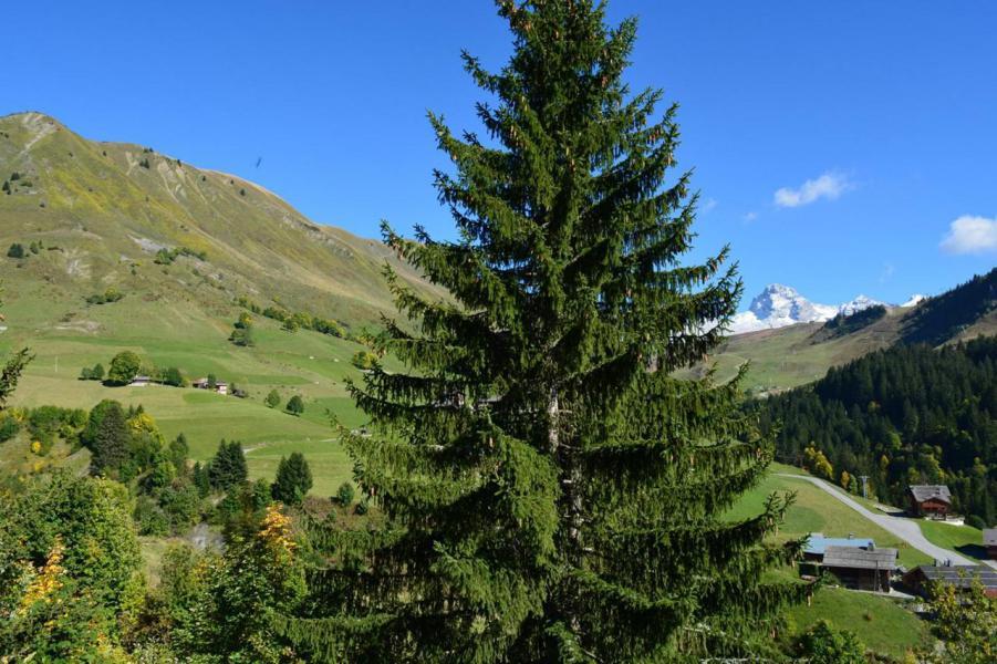 Soggiorno sugli sci Appartamento 1 stanze per 5 persone (2A) - Résidence Chanteneige - Le Grand Bornand