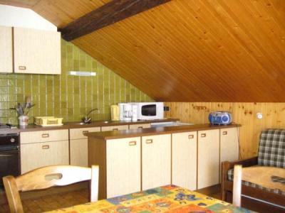 Location au ski Appartement 2 pièces 5 personnes (002) - Residence Le Vieux Noyer - Le Grand Bornand - Cuisine ouverte