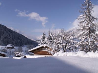 Location au ski Appartement 3 pièces 6 personnes (001) - Residence Les Dodes - Le Grand Bornand - Extérieur hiver
