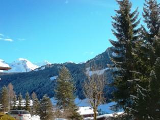 Location au ski Appartement 2 pièces 5 personnes (144) - Residence Les Paquerettes - Le Grand Bornand