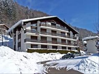 Noël au ski Residence Les Paquerettes