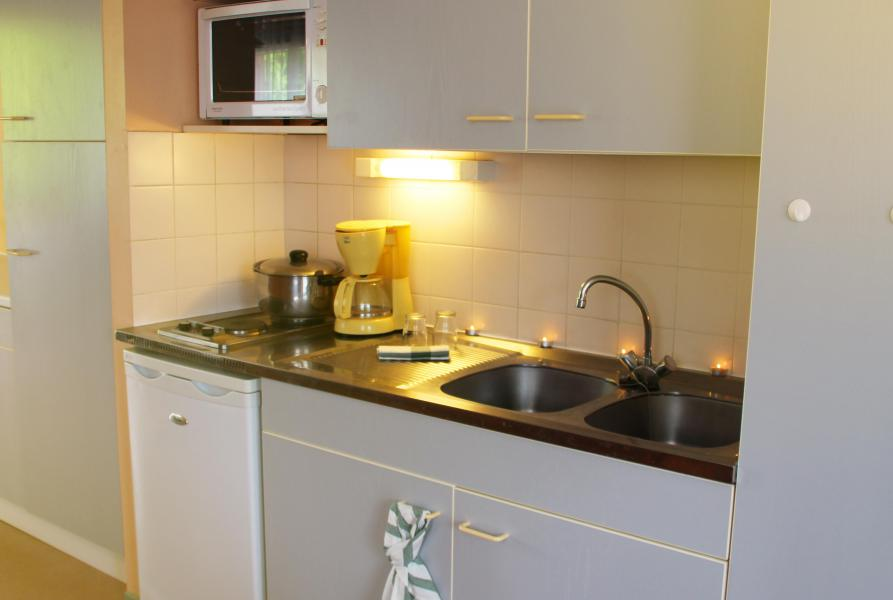 Location au ski VVF Villages la Plaine d'Alsace - Le Lac Blanc - Kitchenette