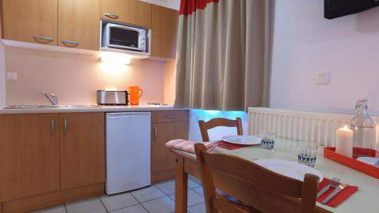Location au ski VVF Villages les Monts du Cantal - Le Lioran - Kitchenette