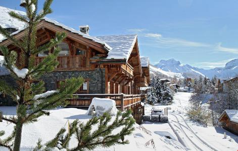 Rent in ski resort Chalet le Lys - Les 2 Alpes - Winter outside