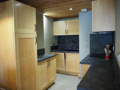Rent in ski resort 2 room apartment cabin 6 people - La Résidence - Les 2 Alpes - Kitchenette
