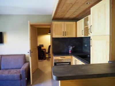 Rent in ski resort 3 room apartment cabin 8 people - La Résidence - Les 2 Alpes - Kitchenette