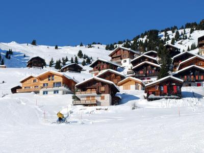 Rent in ski resort Résidence les Chalets de l'Isard - Les Angles - Winter outside
