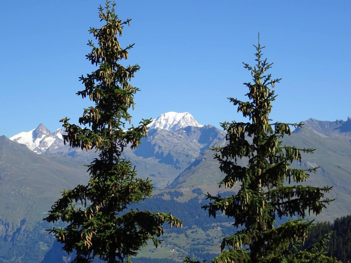 Location au ski Studio coin montagne 4 personnes (913) - Residence Belles Challes - Les Arcs