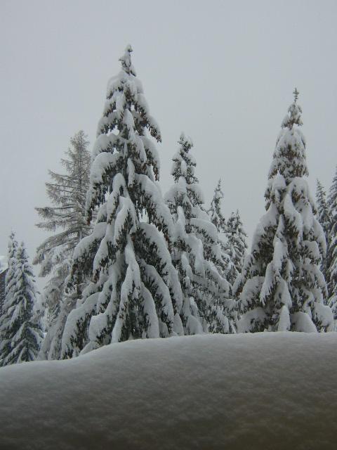 Location au ski Studio coin montagne 5 personnes (467) - Residence Les Lauzieres - Les Arcs