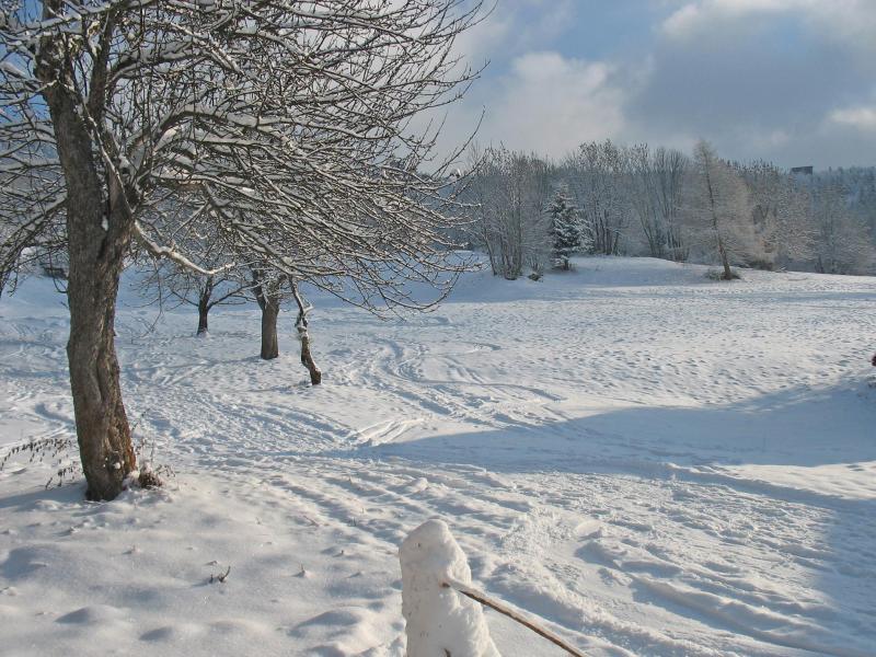 Wynajem na narty Chalet Deux Têtes I - Les Arcs - Zima na zewnątrz