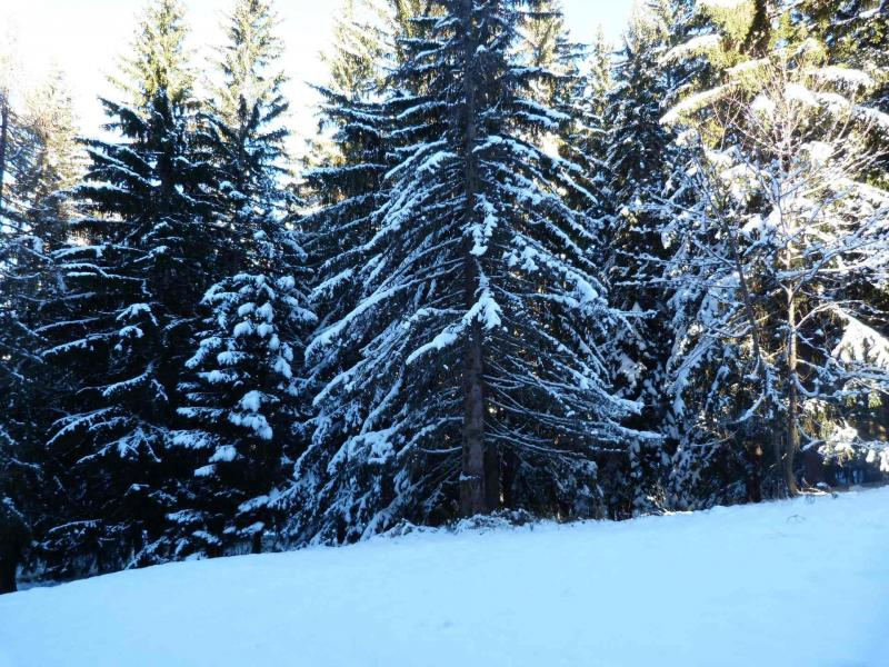 Location au ski Studio 5 personnes (234) - Residence L'aiguille Grive Bat I - Les Arcs