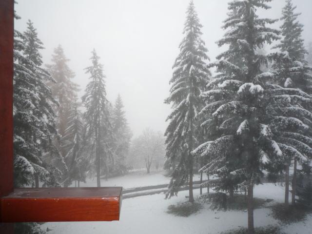 Location au ski Studio coin montagne 5 personnes (277) - Résidence les Lauzières - Les Arcs