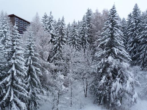 Location au ski Studio 3 personnes (911) - Résidence Nova - Les Arcs - Extérieur hiver