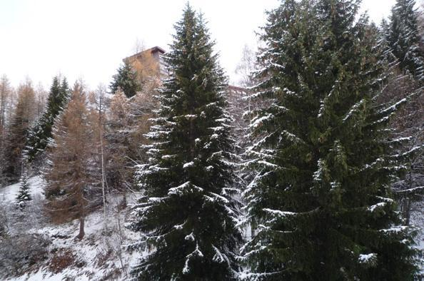 Location au ski Studio 2 personnes (707) - Résidence Nova - Les Arcs