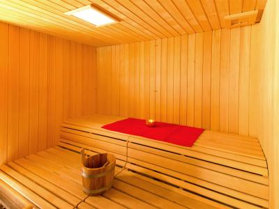 Rent in ski resort Chalet des Arcs CED01 - Les Arcs - Sauna