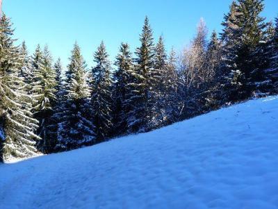 Location au ski Appartement 2 pièces 5 personnes (515) - Residence L'aiguille Grive Bat I - Les Arcs - Extérieur hiver