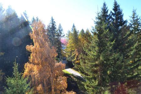 Location au ski Studio coin montagne 4 personnes (509) - Résidence Miravidi - Les Arcs
