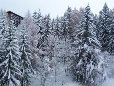 Vacances en montagne Studio 3 personnes (911) - Résidence Nova - Les Arcs - Extérieur hiver