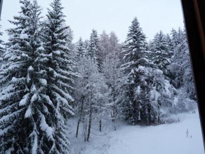 Location au ski Studio 2 personnes (609) - Résidence Nova - Les Arcs