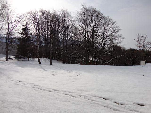 Location au ski Studio 4 personnes (LB0) - Residence Les Mazots - Les Carroz