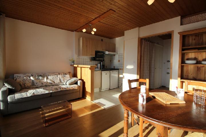 Location au ski Studio coin montagne 4 personnes (282) - Residence Plate - Les Carroz - Canapé-lit