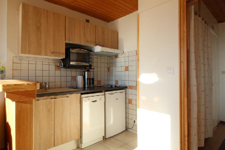 Location au ski Studio coin montagne 4 personnes (282) - Residence Plate - Les Carroz - Kitchenette