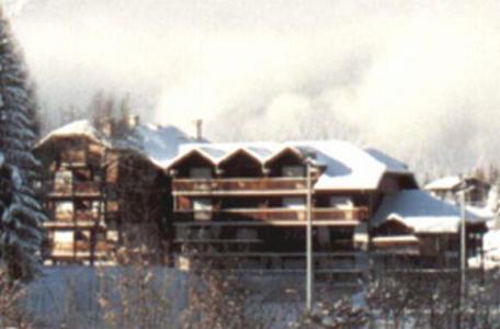 Location au ski Studio coin montagne 4 personnes (251) - Residence Le Mont Blanc - Les Carroz