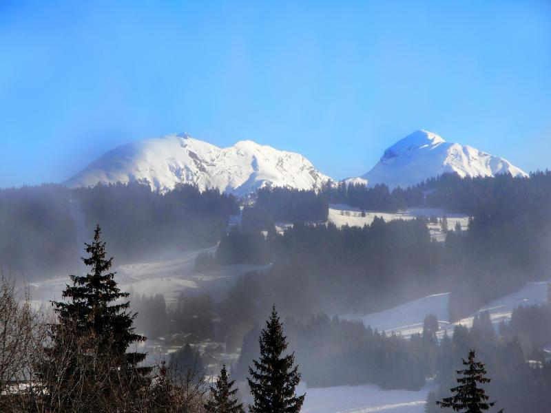 Location au ski Chalet Portes du Soleil - Les Gets - Extérieur hiver