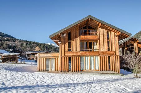 Rent in ski resort Chalet Athina - Les Houches