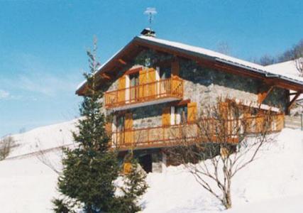 Location au ski Chalet triplex 7 pièces 16 personnes - Chalet Flocon De Belleville - Les Menuires - Extérieur hiver