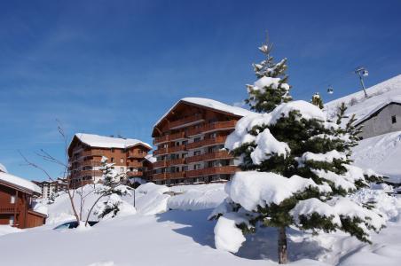 Location  : Les Chalets de l'Adonis hiver