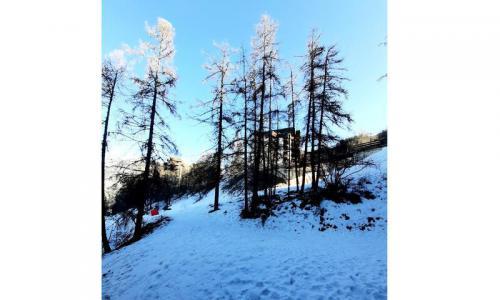 Rental Les Orres : La Résidence l'Oustal winter