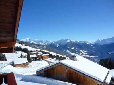 Rental Les Saisies : Chalet l'Eglantine winter