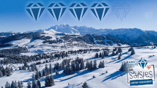 Esquí con familia Résidence le Village 3